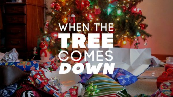 When the Tree Comes Down