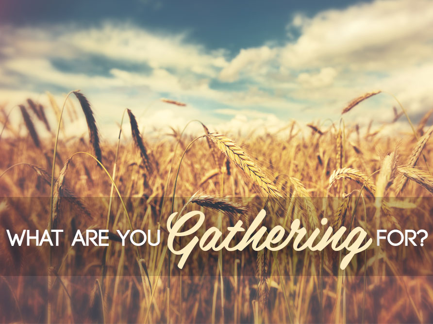 What are you Gathering for?